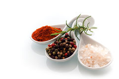 Himalayan salt, black peppercorns and rosemary. Himalayan rock salt, red cayenne pepper and black peppercorns in ceramic spoons with a sprig of fresh rosemary Stock Photos
