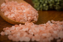 Himalayan salt Stock Photography