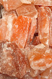 Himalayan salta Royaltyfria Bilder