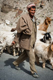 Himalayan shepherd leads his goat and sheep flock. INDIA,  LAHOUL VALLEY - SEPTEMBER 5. Himalayan shepherd from Lahoul Valley leads his goat and sheep flock Stock Photo
