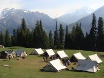 Himalayan skönhet royaltyfri fotografi