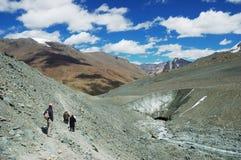Himalayan toneel Stock Foto's
