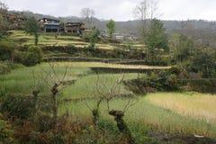 Himalayan village Royalty Free Stock Photo