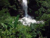 Himalayan Waterfall in Monsoon Season Royalty Free Stock Images