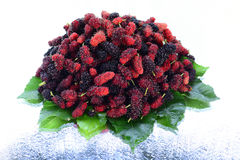 Himalayanmalbery fruit. The fruit is red , black stay on white ground Stock Photography