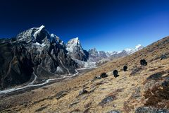 Himalayas. Great mountain views of Himalayas in Nepal trekking on the way to Everest base camp Royalty Free Stock Images