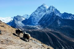 Himalayas. Great mountain views of Himalayas in Nepal trekking on the way to Everest base camp Royalty Free Stock Photography