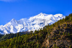 Himalayas mountain peak view Annapurna II Stock Photography