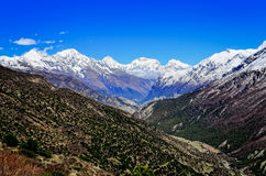 Himalayas mountain valley view with white mountain peaks Stock Images