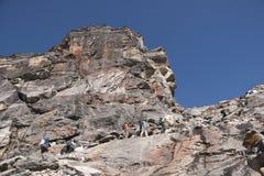 himalayas som trekking Arkivfoton