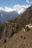himalayasbergnepal trail Arkivfoton