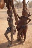 Himba儿童跑 免版税库存照片