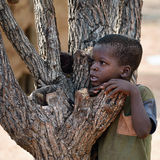 Himba boy, Namibia Royalty Free Stock Image
