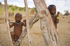 Himba children Royalty Free Stock Image