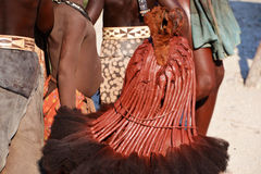 Himbas. The Himba are indigenous peoples  living in northern Namibia, in the Kunene region Stock Photos