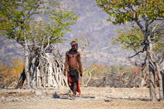 Himbas. The Himba are indigenous peoples  living in northern Namibia, in the Kunene region Royalty Free Stock Photography