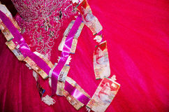 Himbeerbraut mit einem Bündel Papierrechnungen von NIS 200 und 100 Lizenzfreie Stockfotografie
