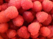 Himbeere, Art der Frucht, frisch, saftig, süß Stockfoto