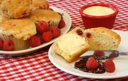 Himbeere-Muffins und Beeren Stockbilder