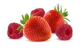 Himbeere und Erdbeere auf weißem Hintergrund Lizenzfreies Stockfoto