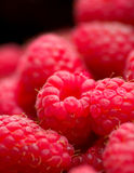 Himbeeren Stockfotos