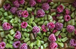 Himbeerenpieplant-Kuchen-Füllung Lizenzfreie Stockfotos