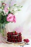 Himbeerschokoladennachtisch Stockbild