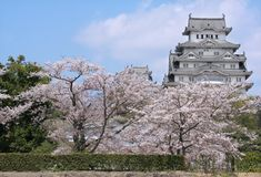 Himeji. Castle and cherry blossom, Japan Stock Photos