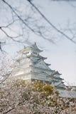 Himeji Castle στην ημέρα ανθών Sakura, Στοκ φωτογραφία με δικαίωμα ελεύθερης χρήσης
