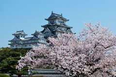 Himeji Castle during cherry blossom Stock Image