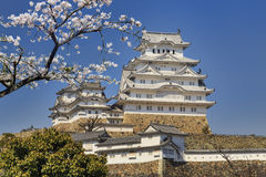 Himeji castle during cherry blossom time Stock Photo