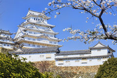 Himeji castle during cherry blossom time Royalty Free Stock Photo