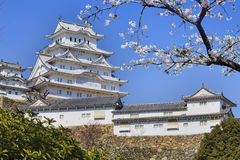Himeji castle during cherry blossom time Stock Photography