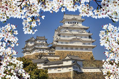 Himeji castle during cherry blossom time Stock Photos