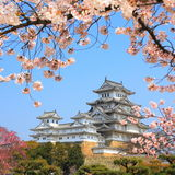 The Himeji Castle, Japan royalty free stock image