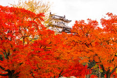 Himeji Castle, Japan. Stock Photo