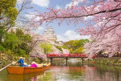 Himeji Castle, Japan in Spring royalty free stock image