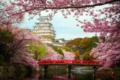 Himeji Castle. With Red Bridge While Cherrry Blossoms Viewing Festival, Kyoto Japan, this immage can use for asia, travel, japan, japanese and kyoto concept stock image
