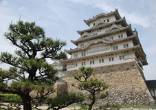 Himeji Castle With Tree Royalty Free Stock Photo