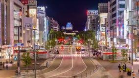 Himeji japan stock video footage