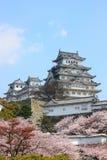 Himeji-Schloss- und Frühlingskirschblüten Stockbild