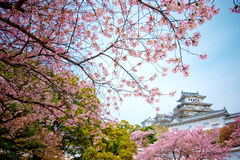 Himeji slott Arkivfoto