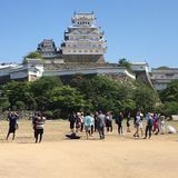 Himeji slott Royaltyfri Foto