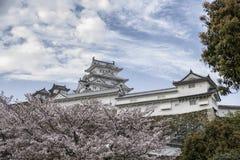 Himeji slott i körsbärsröd blomning royaltyfria bilder