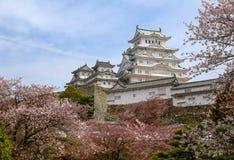 Himeji slott, Japan, under träd för körsbärsröd blomning Royaltyfri Fotografi
