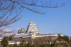 Himeji slott under tid för körsbärsröd blomning arkivfoto