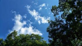 Himla- skypornsolstrålesolljus Arkivbild