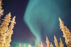 Himlen som fylls med att flytta nordliga ljus Arkivbild