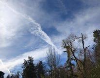 Himmel über einem Park in Madrid stockbilder