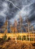 himmel Blitz im Himmel Dunkle Wolken Stockfotografie